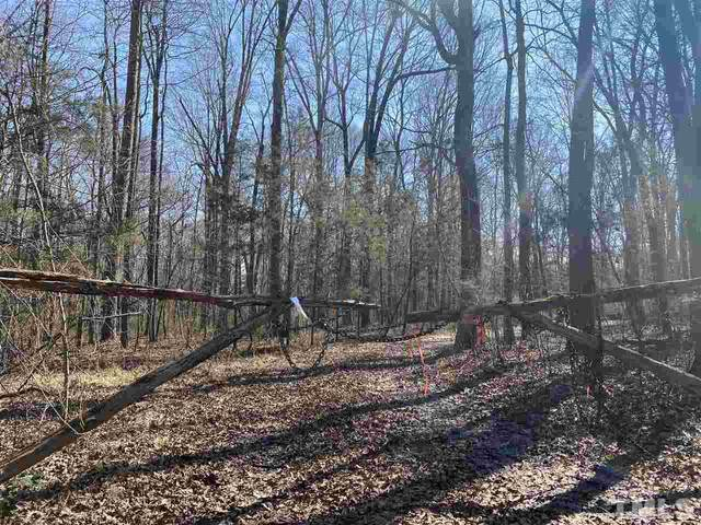 9650 Twisted Oak Trail, Snow Camp, NC 27349 (#2369983) :: The Perry Group