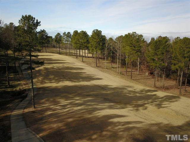 800 Golfers View, Pittsboro, NC 27312 (#2370908) :: RE/MAX Real Estate Service