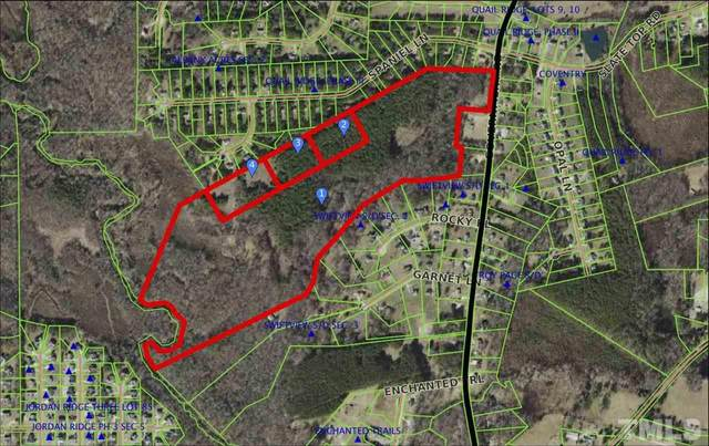 Government Road, Clayton, NC 27520 (#2372269) :: The Jim Allen Group