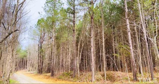 IOWA dr Ranch Road, Clayton, NC 27520 (#2373816) :: Triangle Top Choice Realty, LLC