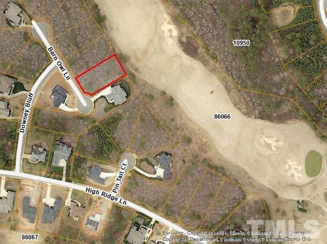 24 Barn Owl Lane, Pittsboro, NC 27312 (#2375815) :: RE/MAX Real Estate Service