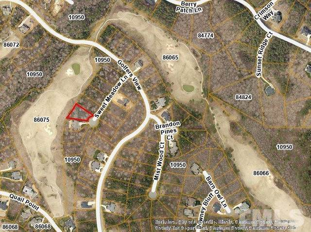 48 Sweet Meadows Lane, Pittsboro, NC 27312 (#2375998) :: RE/MAX Real Estate Service