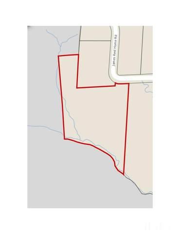 8400 James Rest Home Road, New Hill, NC 27562 (#2378439) :: Masha Halpern Boutique Real Estate Group