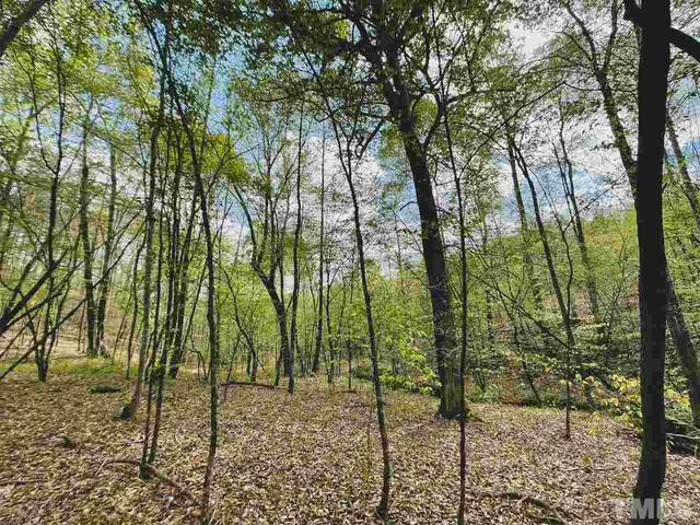 24.6 Ac. Sheppard Mill Road, Stokes, NC 27046 (#2379135) :: Triangle Top Choice Realty, LLC