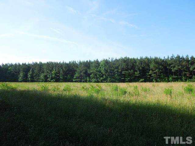 TBD Schley Road, Hurdle Mills, NC 27541 (#2389836) :: The Jim Allen Group