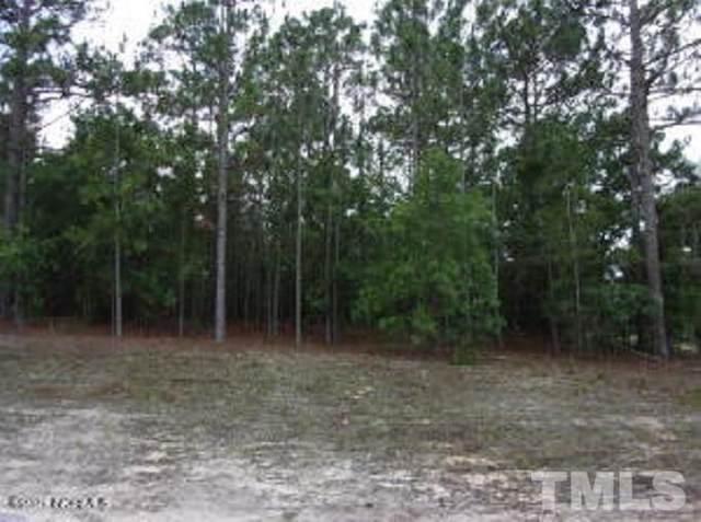27 Old Tom Morris Road, Garland, NC 28441 (#2396671) :: Log Pond Realty