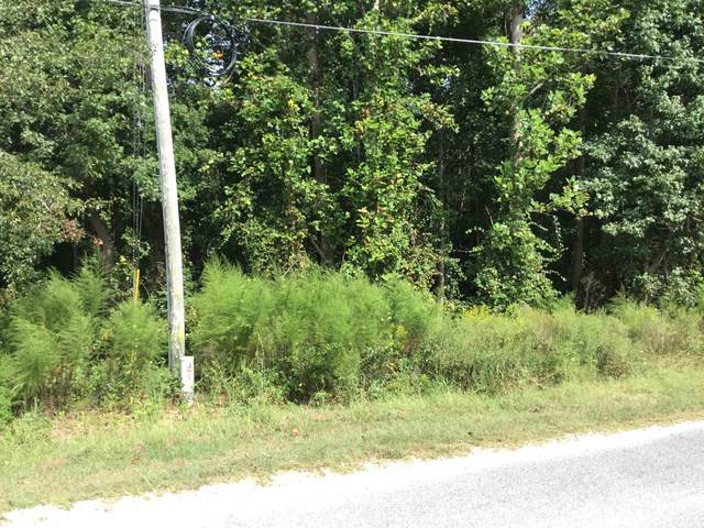 Pea Ridge Road, Angier, NC 27501 (#2408852) :: Rachel Kendall Team