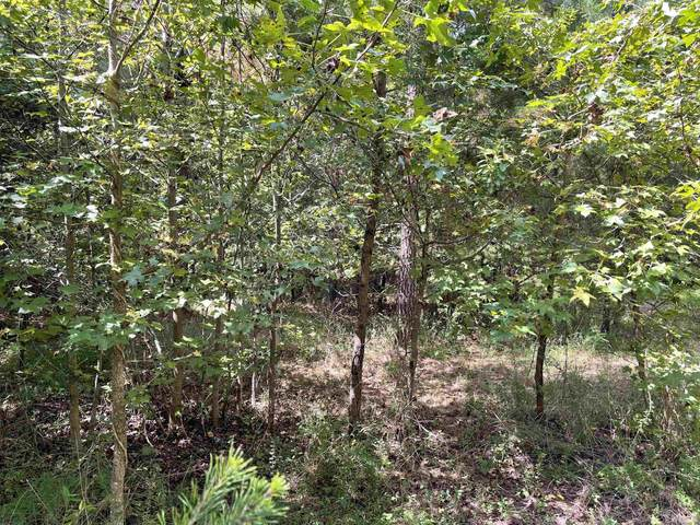 Lot 1 High Rock Road, Efland, NC 27243 (#2408871) :: Raleigh Cary Realty