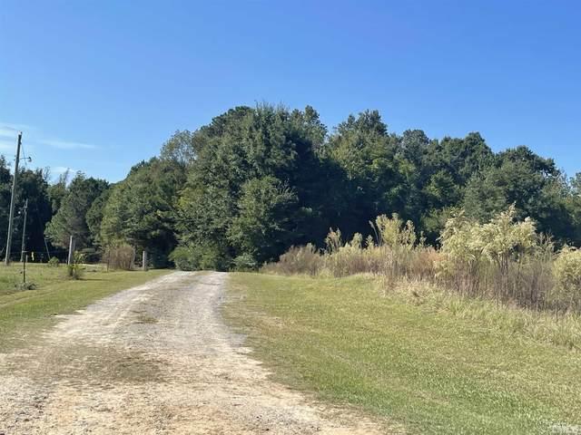 170 Barefoot Farm Lane, Four Oaks, NC 27524 (#2414201) :: Scott Korbin Team