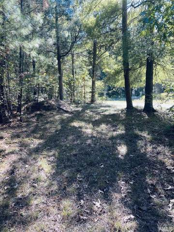 1440 Mclaurin Road, Siler City, NC 27344 (MLS #2414698) :: The Oceanaire Realty