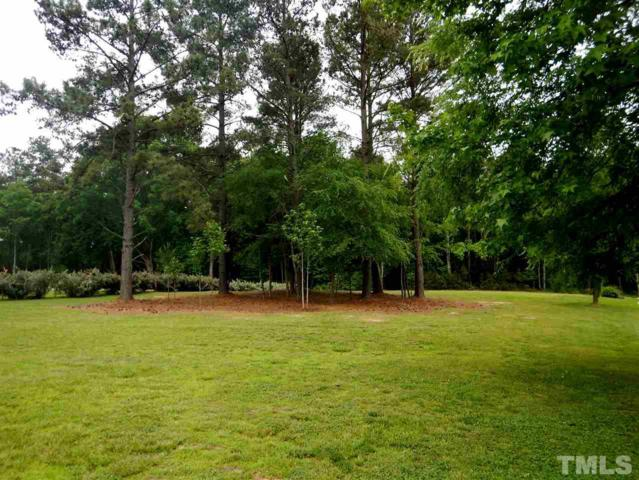 154 Skippers Landing, Manson, NC 27553 (#2049698) :: Raleigh Cary Realty