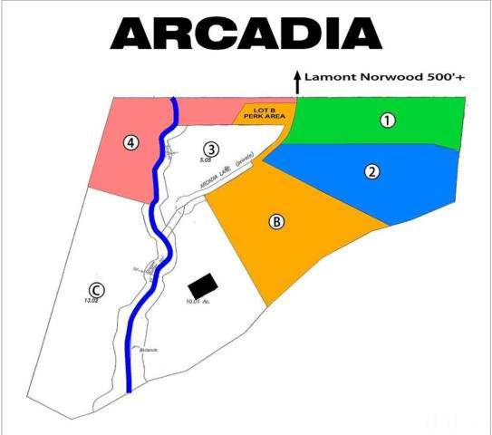 Lot 1 Arcadia Lane, Pittsboro, NC 27312 (#2115961) :: The Jim Allen Group