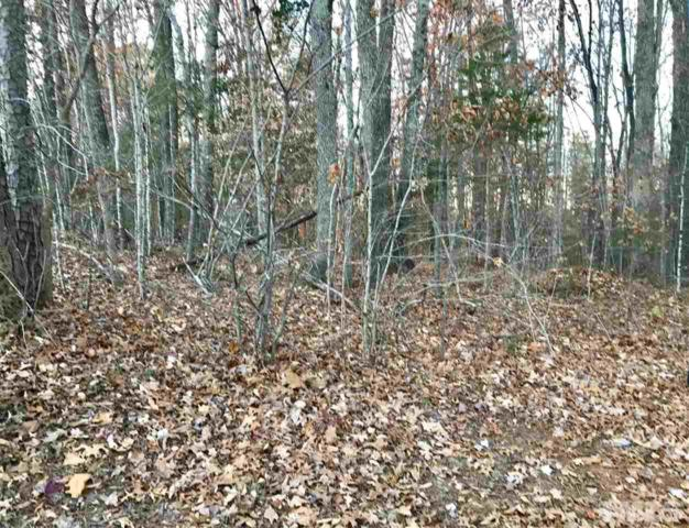 Lot 87 & 93 Mountain Lane, Henderson, NC 27537 (#2161975) :: Raleigh Cary Realty