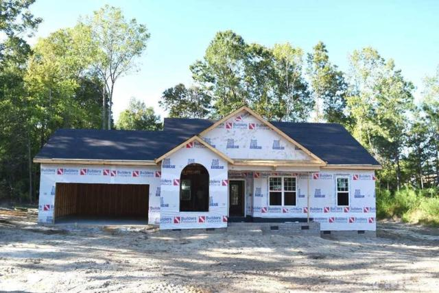 199 Soaring Eagle Trail, Zebulon, NC 27597 (#2210206) :: The Abshure Realty Group