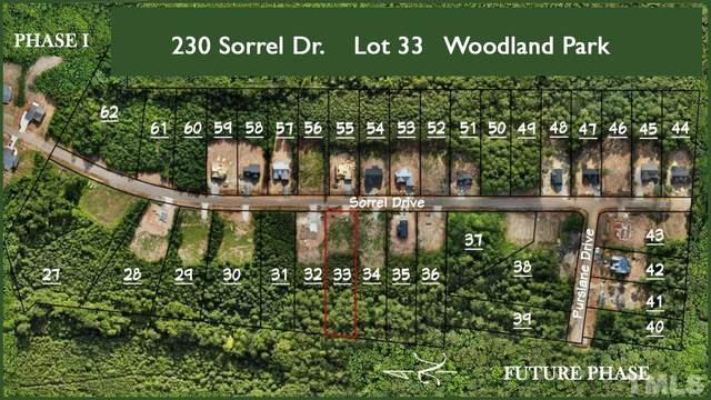 230 Sorrel Drive, Franklinton, NC 27525 (MLS #2402419) :: On Point Realty
