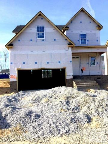78 W Lumber Court, Clayton, NC 27520 (#2173477) :: The Abshure Realty Group