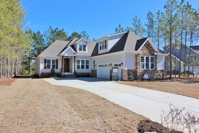 46 North Julip Court, Pittsboro, NC 27312 (#2152738) :: Raleigh Cary Realty