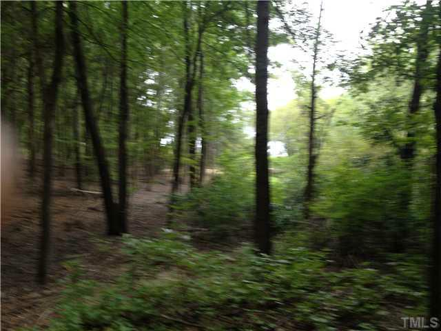 Cedar Pine Lane - Photo 1