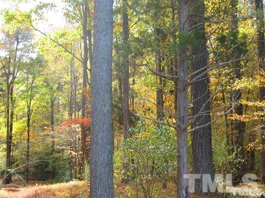 216 Harvest Lane, Pittsboro, NC 27312 (#2044530) :: Rachel Kendall Team, LLC