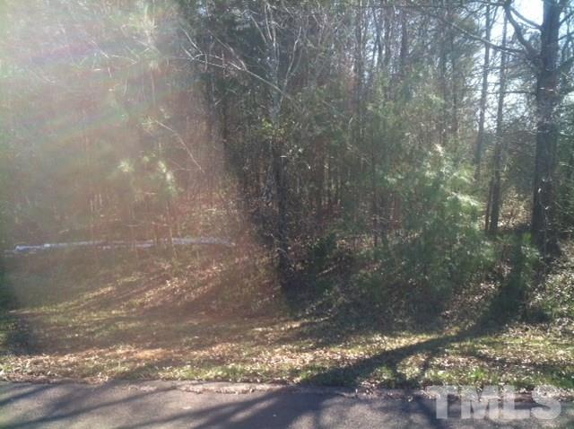 Lot 4 Palmetto Drive, Roxboro, NC 27574 (#2045177) :: The Perry Group