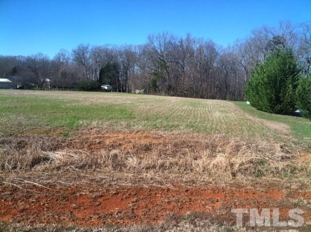 Lot 21 Palmetto Drive, Roxboro, NC 27574 (#2045183) :: The Perry Group