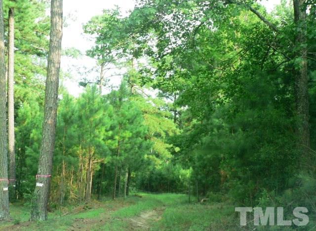 40.19 N Nc 39 Highway, Bunn, NC 27508 (#2083694) :: Raleigh Cary Realty