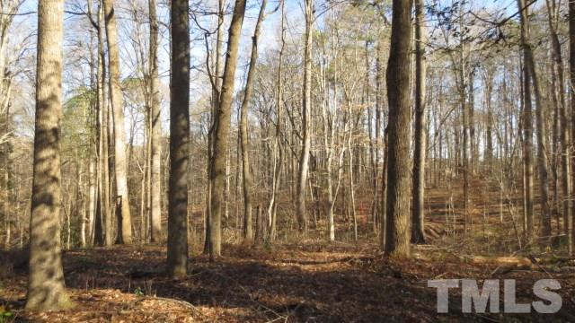 4117 Bashford Bluffs Lane, Raleigh, NC 27603 (#2090293) :: Rachel Kendall Team, LLC