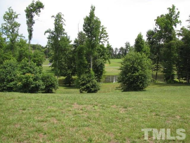 Lot 21/21A Lakeside Lane, Providence, NC 27315 (#2119448) :: Raleigh Cary Realty