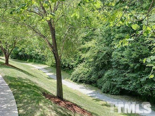 Winmore Avenue, Chapel Hill, NC 27516 (#2144973) :: The Jim Allen Group