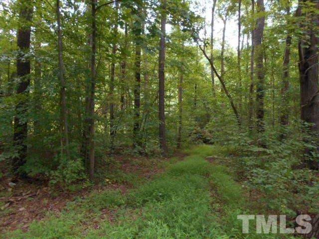 225 N Raleigh Farms Road, Youngsville, NC 27596 (#2147813) :: Raleigh Cary Realty