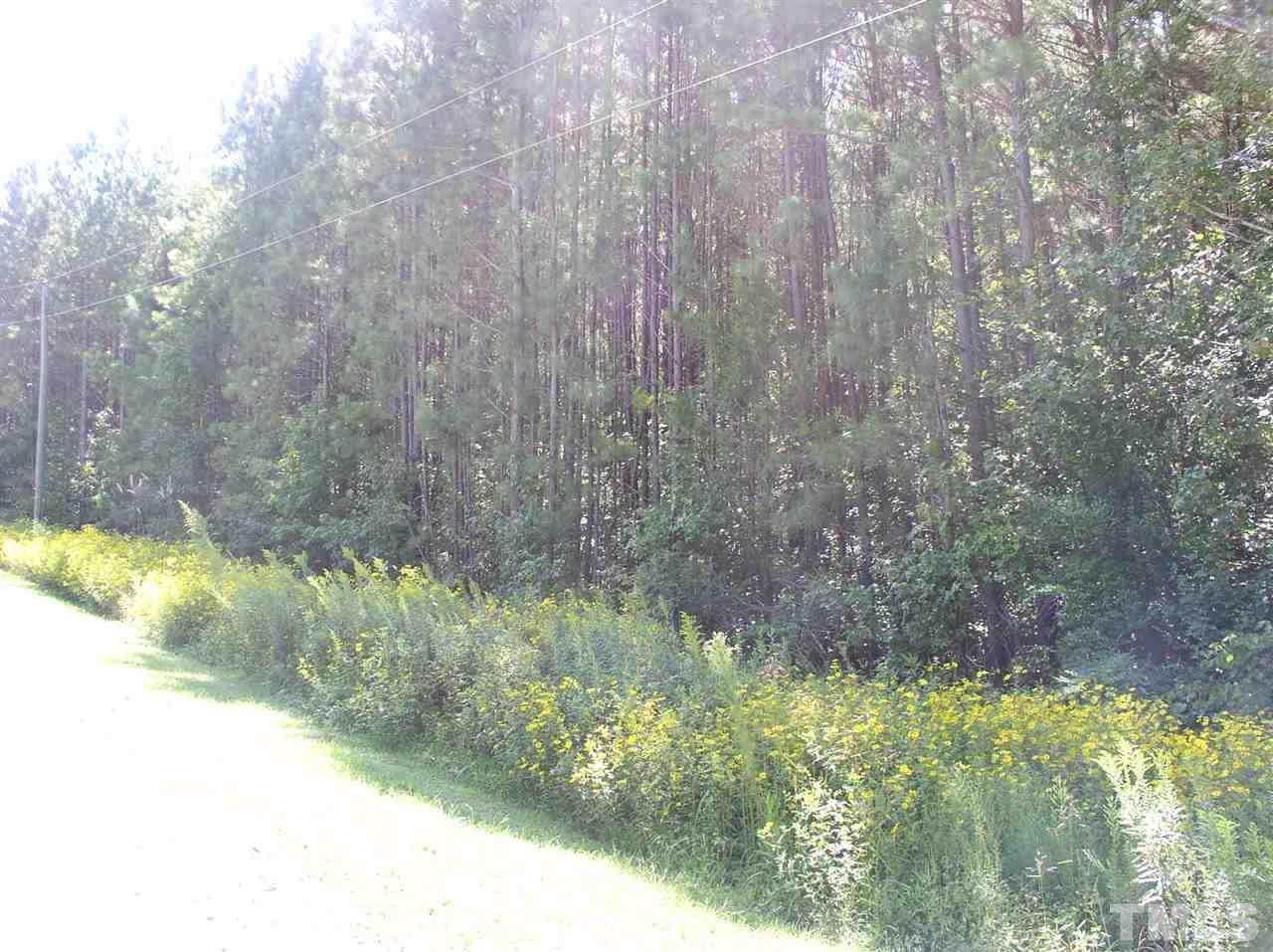 Lot 23 Hidden Creek Lane - Photo 1