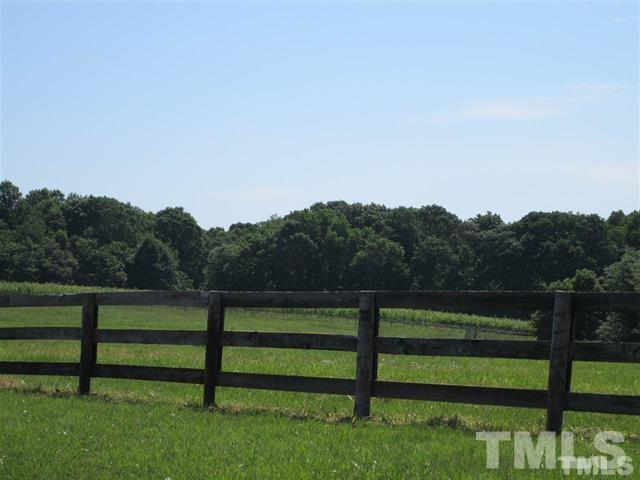 1008 Bowers Store Road, Siler City, NC 27344 (#2152339) :: Raleigh Cary Realty