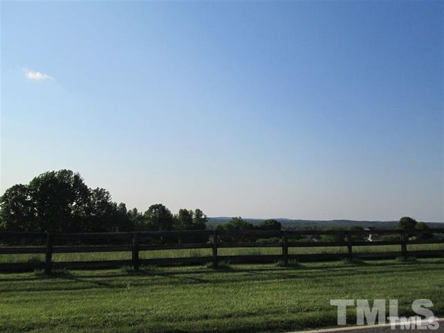 1136 Bowers Store Road, Siler City, NC 27344 (#2152343) :: The Jim Allen Group