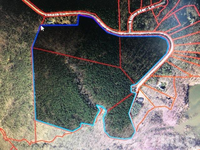 55.75 acres Lonach Lane, Roxboro, NC 27574 (#2157342) :: The Jim Allen Group