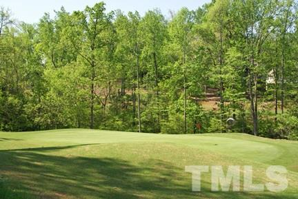 459 The Preserve Trail - Photo 1