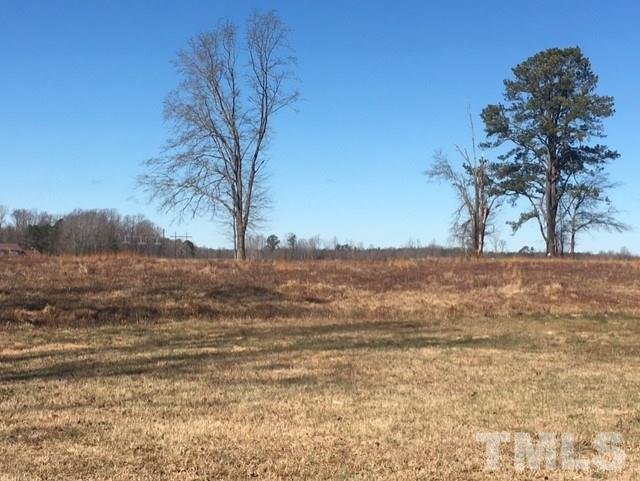 300 Smithfield Street, Angier, NC 27501 (#2171784) :: Raleigh Cary Realty