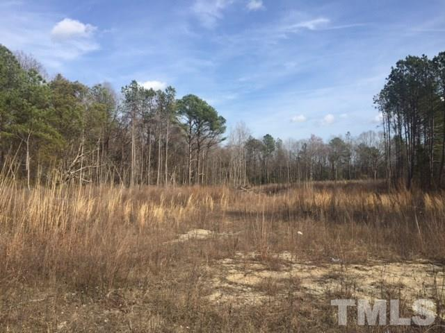 3312 Alfreda Court, Wendell, NC 27591 (#2173515) :: Triangle Midtown Realty