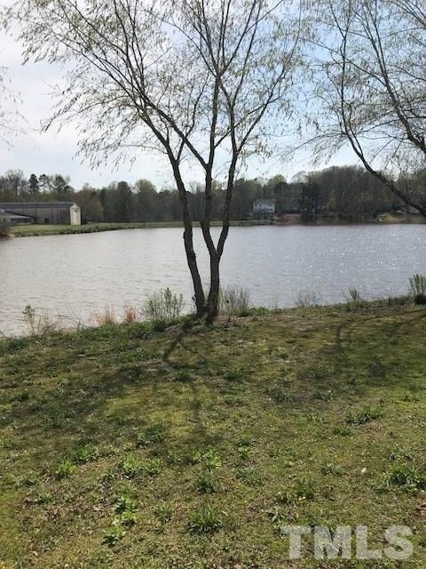 219 Lakewater Drive #219, Cary, NC 27511 (#2183134) :: Rachel Kendall Team, LLC