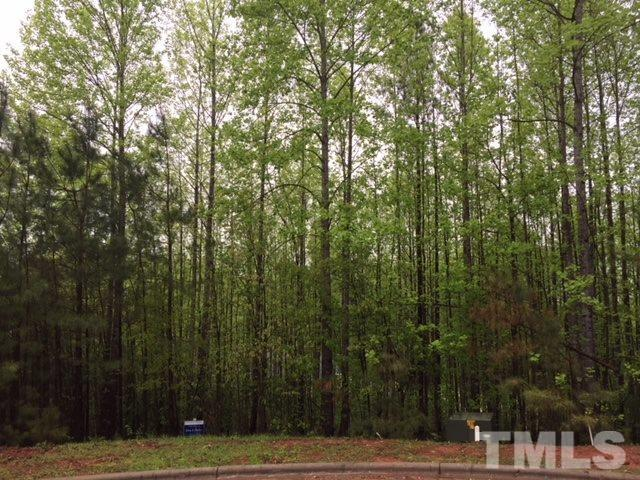 17 Pin Tail Court, Pittsboro, NC 27312 (#2186967) :: The Abshure Realty Group