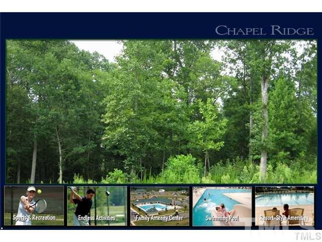 146 Deep Creek, Pittsboro, NC 27312 (#2198868) :: The Perry Group