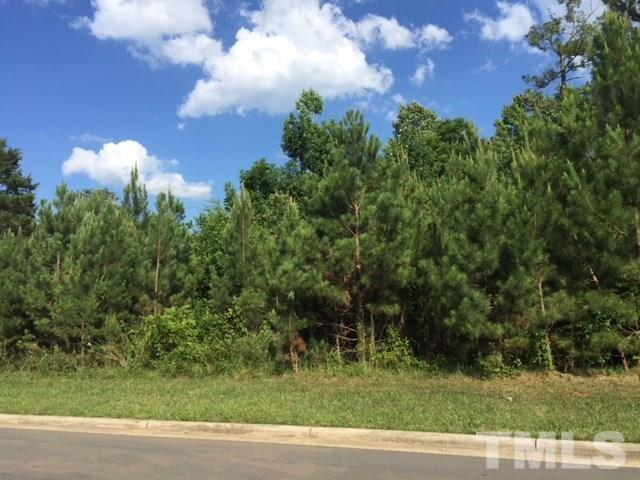 802 Cabin Creek, Pittsboro, NC 27312 (#2199766) :: The Perry Group