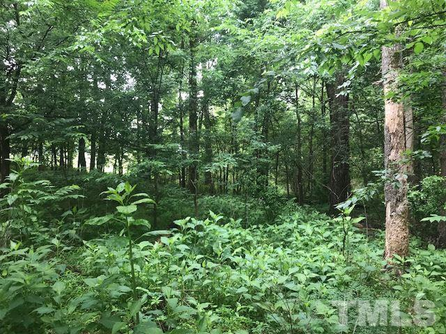 Lot 5 Mebane Oaks Road, Mebane, NC 27302 (#2202793) :: The Abshure Realty Group