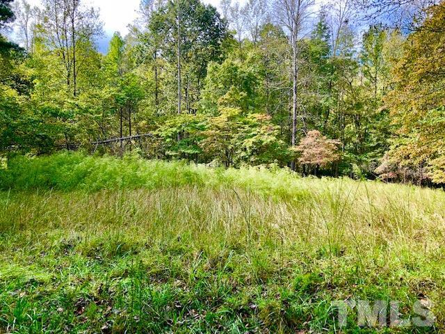2194 Crawford Dairy Road, Pittsboro, NC 27312 (#2219917) :: RE/MAX Real Estate Service