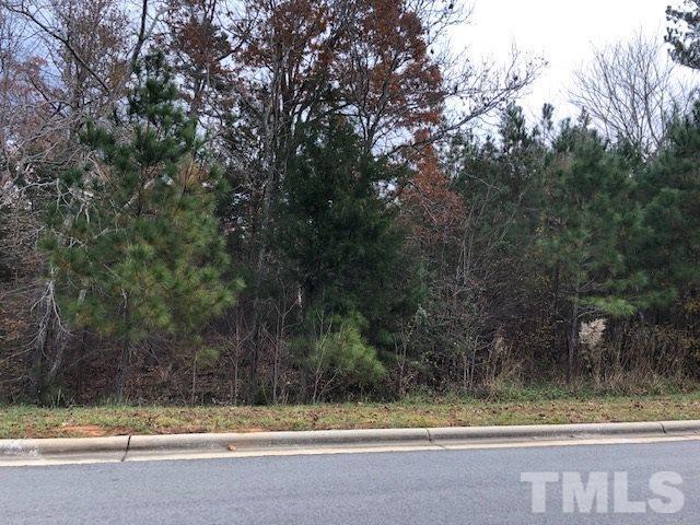 84 Cabin Creek, Pittsboro, NC 27312 (#2225832) :: Marti Hampton Team - Re/Max One Realty