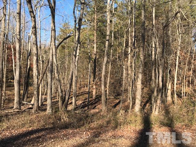 3611 Red Mountain Road, Rougemont, NC 27572 (#2226150) :: Dogwood Properties