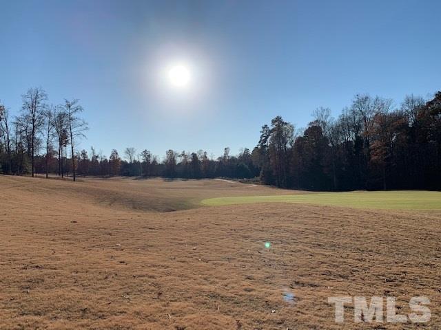 34 Sweet Meadows Lane, Pittsboro, NC 27312 (#2226296) :: Marti Hampton Team - Re/Max One Realty