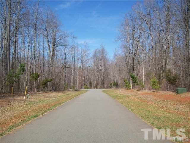 Lot 41 Iron Wood Drive, Snow Camp, NC 27349 (#2227066) :: The Perry Group
