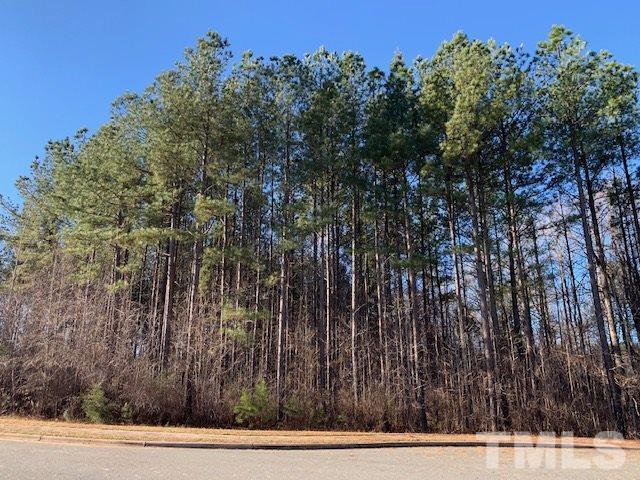 207 Colonial Trail, Pittsboro, NC 27312 (#2231307) :: Rachel Kendall Team
