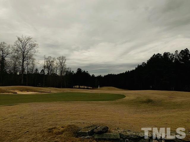 95 Colonial Trail, Pittsboro, NC 27312 (#2231536) :: Rachel Kendall Team