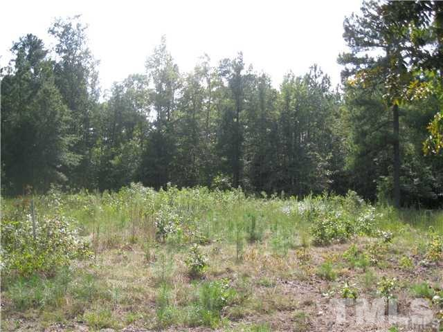 Lot 0 Nc Highway 87 - Photo 1